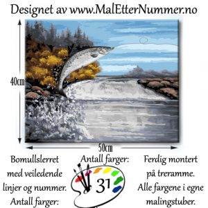 Mal etter nummer - Laksforsen - Paintbynumber - Vefsna - kreativ - mindfulness - hobby
