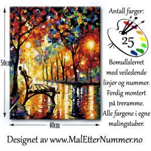 Mal etter nummer - Paintbynumber - kreativ - mindfulness - hobby -